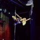 Miss Pole Dance Exotic 2013